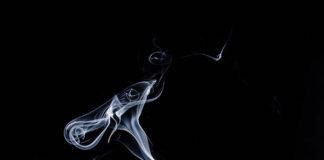 Feminizowane nasiona marihuany